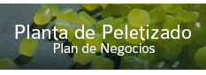 Plan de Negocios Planta de Peletizado